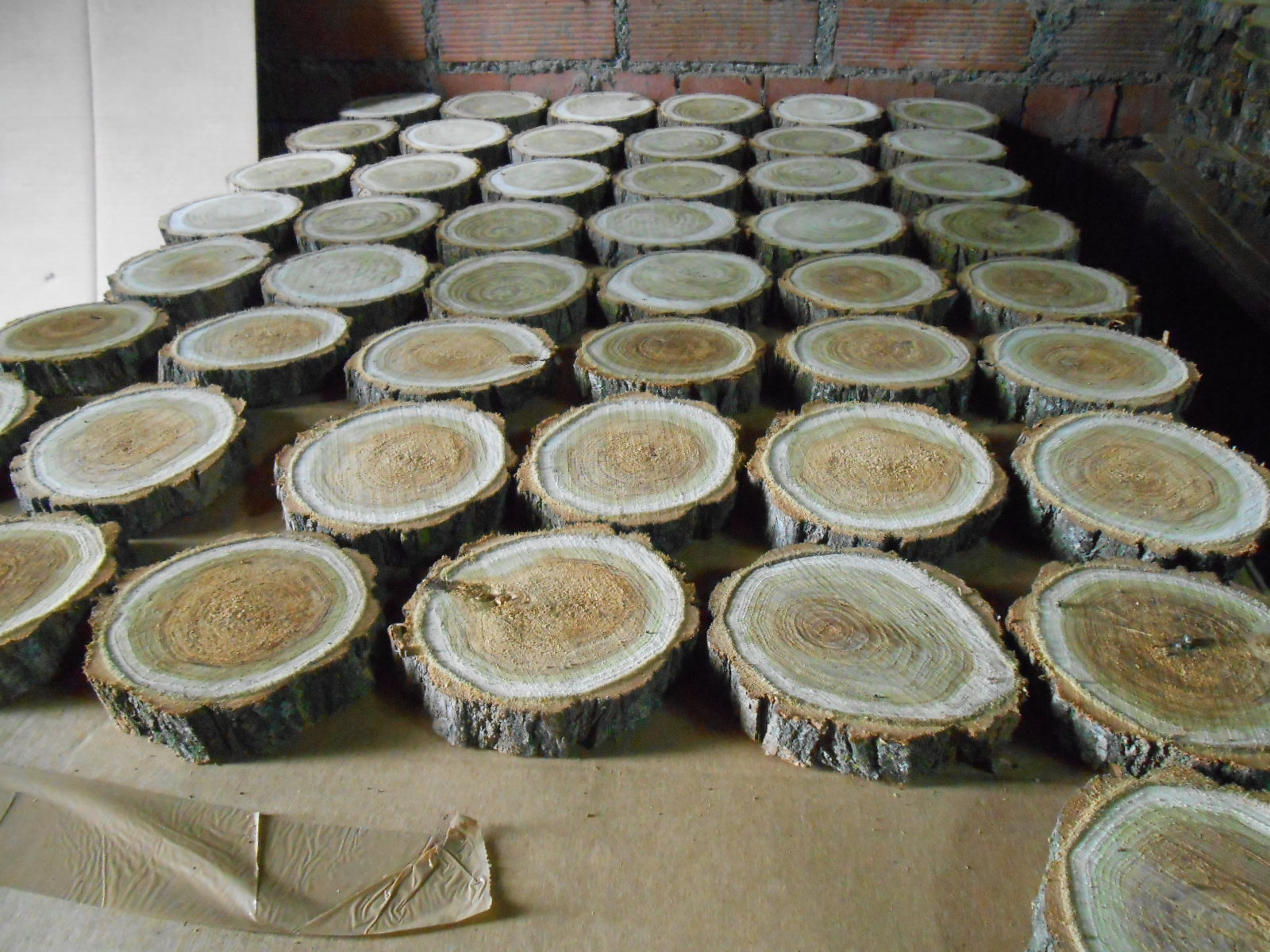 Venta de rodajas de madera