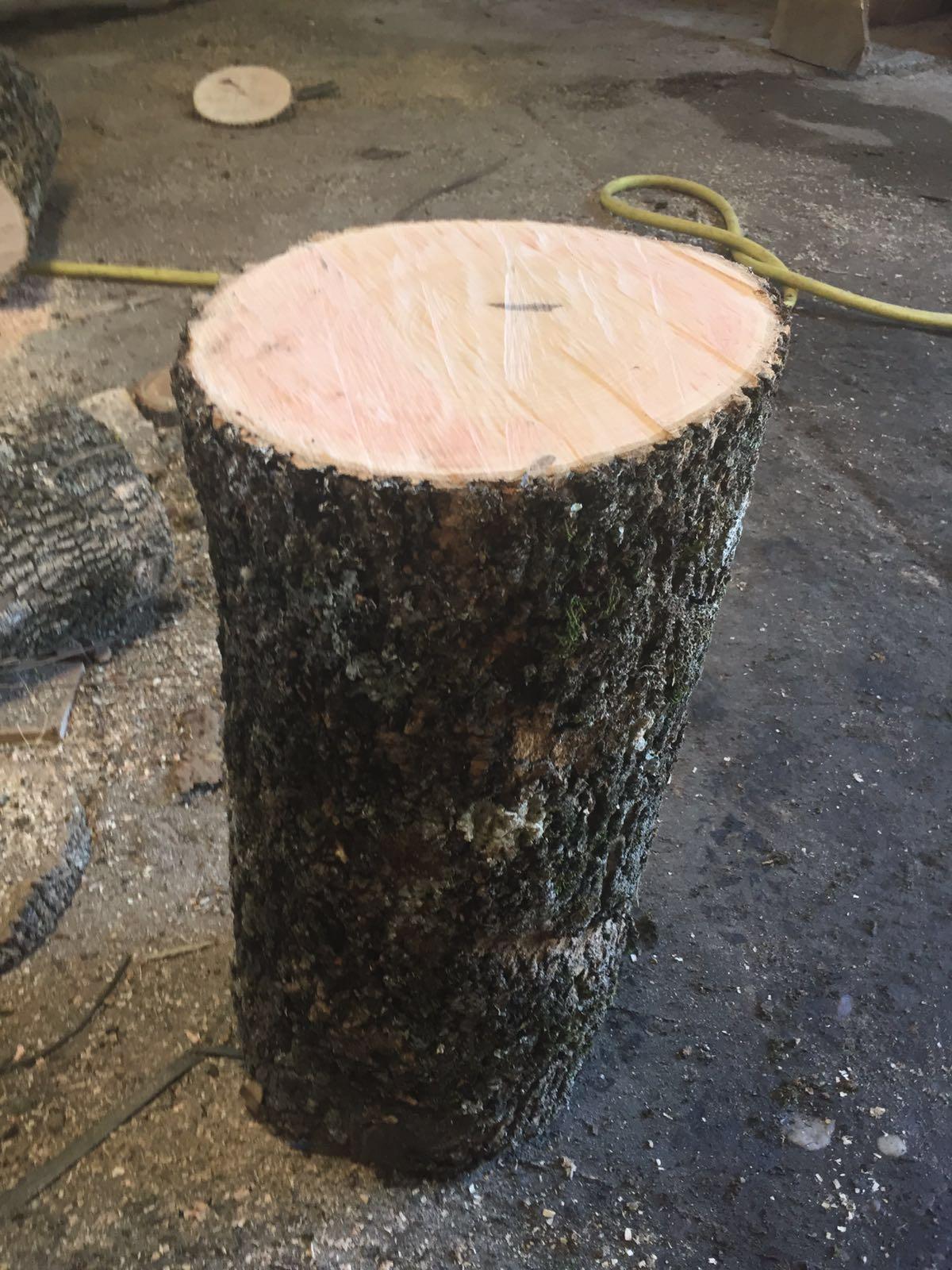 Troncos de madera de fresno