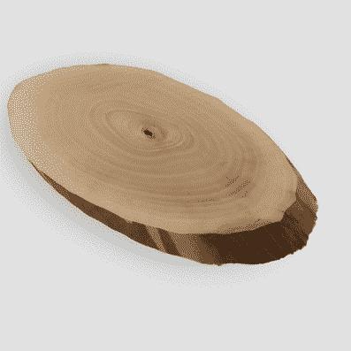 rodajas de madera secas