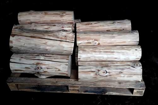 Troncos semisecos sin corteza | Woodna: Maderas Naturales