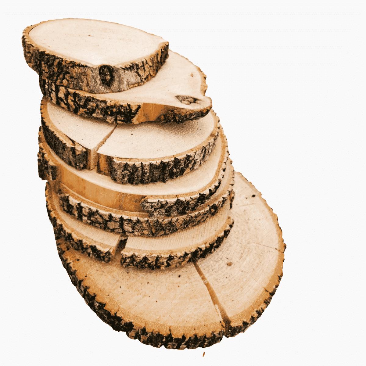 Rodajas de madera grietas | WOODNA