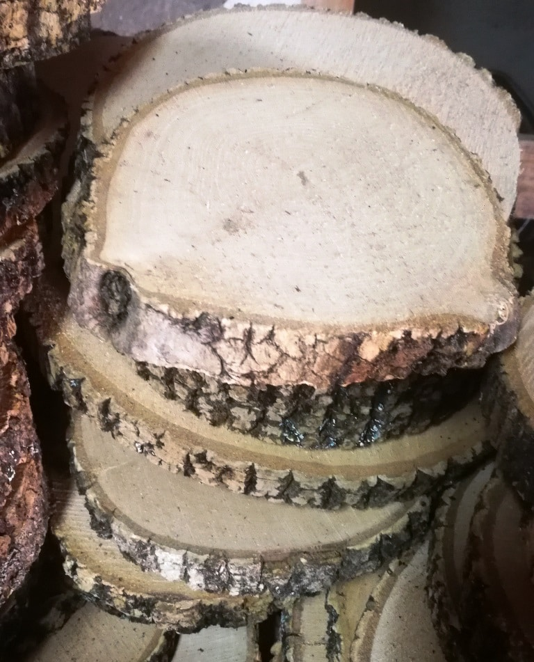 Rodajas de madera OFERTA   WOODNA